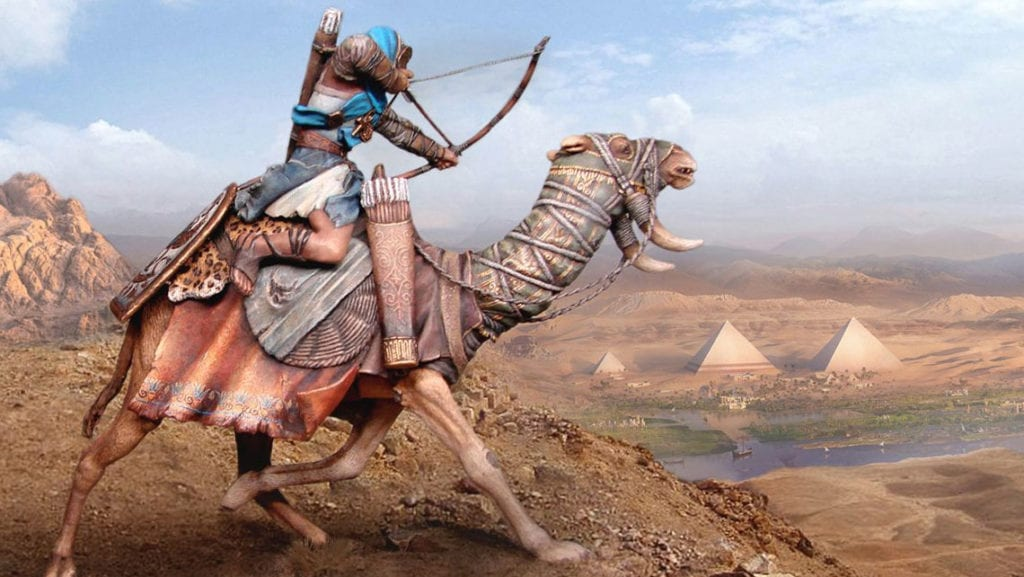 жизнь верблюда